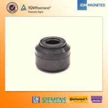 Anisotropic Ferrite Injection Magnet