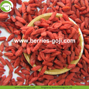 Venta al por mayor de Sweet Nutrition Low Pesticide Goji Berry