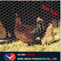 Best chicken wire mesh poultry wire netting