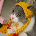 Winter Pet Dogs Cats Knitted Hat Cute Girl Braid Shaped