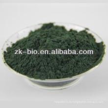 China Polvo orgánico de alta calidad de la espirulina