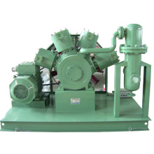 High Pressure Freon Fluoroethylene Compressor (HEW-50/150CE Approval)