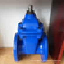 Flanged end 8 inch gate valve with cast iron body