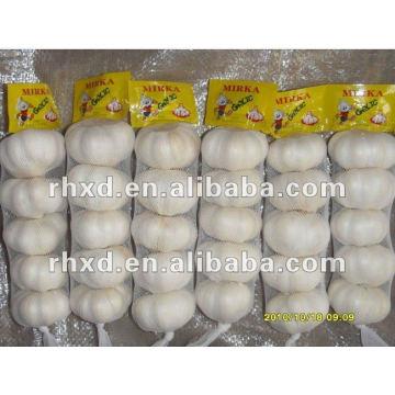 Cangshan New Fresh Chinese Normal White Garlic