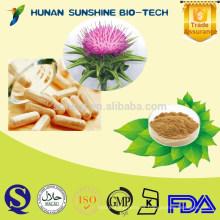 Cápsula soluble en agua del extracto de Thistle de la leche del comercio internacional / extracto del cardo de leche (Silybin) para la ayuda del hígado