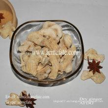 Condimento alimenticio hierba solo especia orgánico secado jengibre