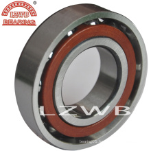 Angular Contact Ball Bearing (7000 series)