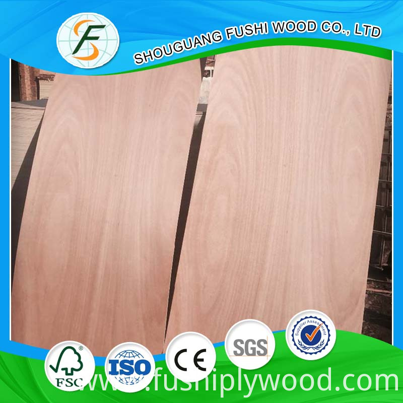 Natural Plywood Door Skin