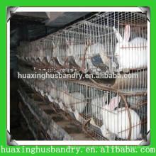 Precio más barato de venta Cajas de conejo vertical