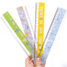 Plastic Ruler /Geometry Template Ruler