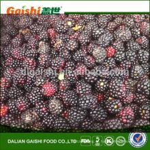 new product frozen blackberry