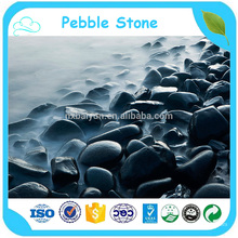 Round Mixed Color Pebble Stone River Stone