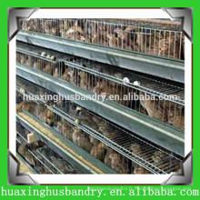 Cage de transport en plastique de volaille