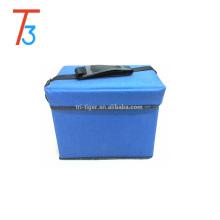 el bolso portátil del refrigerador de la torta / el refrigerador fresco lleva el fabricante del bolso más fresco / del bolso