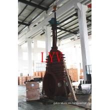 China Válvula de puerta plana de acero inoxidable