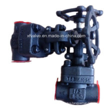 ANSI Standard Forged Carbon Steel A105 Thread End Globe Valve