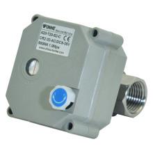 NSF61-G Válvula de bola de agua de acero inoxidable motorizada eléctrica de 2 maneras con la operación manual (T20-S2-B)