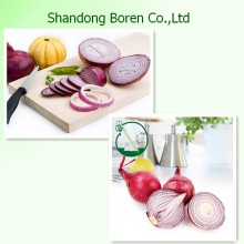 New Crop Fresh Red /Yellow Onion in China