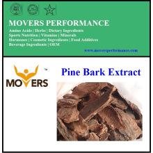 Extrait d'écorce de pin de haute qualité
