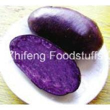 2016 New Crop Potato with A Grade Quality