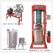 6yy-250 Olive, Soybean, Peanut Automaitic Oil Press Equipment