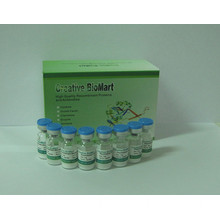 Fixable Dead Cell Staining Kit (Green Fluorescence 405)