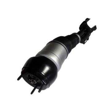 para Mercedes W166 Air Suspension Shock 1663207013