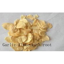 Garlic Flake Withroot Top Qualtiy Air Desidratado