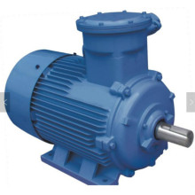 CNE 3 Phase Motor 2P Explosion Proof Motors