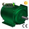 50W-5MW Wind Turbine Permanent Magnetic Generator