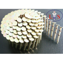 High Quality Polishing Iron Steel Nails for Buiding
