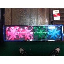 Caja de regalo de iluminación