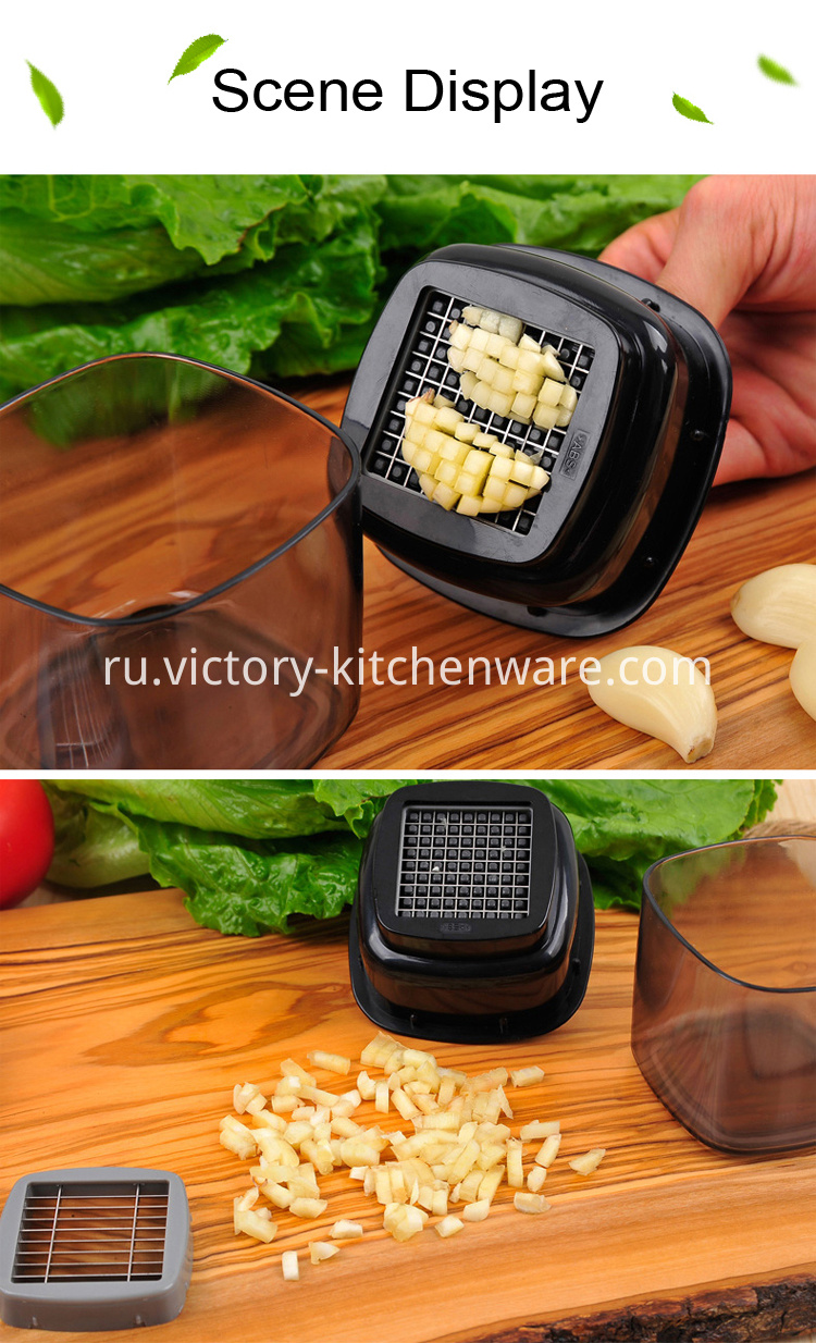 multi-function garlic press