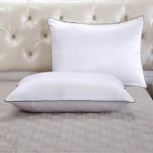 Taie d'oreiller en soie 100% pure 2 pièces avec fermeture éclair cachée