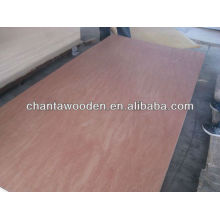 best quality 24mm bintangor commercial plywood sheet
