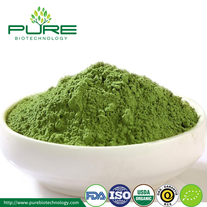 Low Price Matcha Green Tea Powder