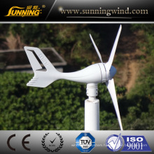 Factory Supply Wind Turbine Electricity 3 Phase 300W