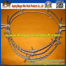 Positive and Negative Screw Galvanized Barbed Wire