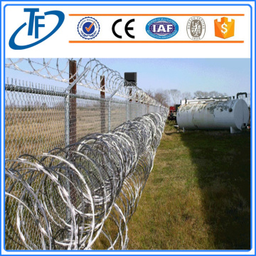Galvanized or PVC coated shazor wire