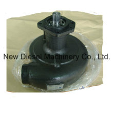 Cummins Engine Part Water Pump 3050443