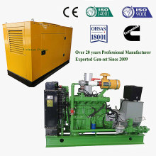Énergie de riz de Biomass d'énergie renouvelable \ Puce en bois \ Genset / générateur de biomasse de gazéification de paille