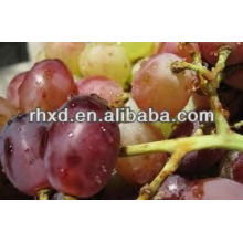 2013 New Crop best fresh red grapes Red Grapered grape skin extract