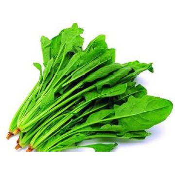 De Buena Calidad Polvo de la espinaca directamente de la fuente de la muestra gratis de la fábrica Pedido mínimo: 1kg