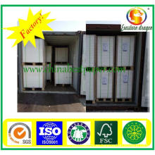 Grade AAA Folding Box Board-Paper Factory