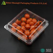 Caixa de empacotamento de fruta de plástico bolha