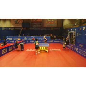 ENLIO Ittf Table Tennis Floor