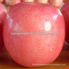 jining fuji apple