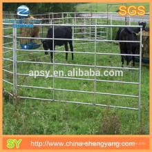 Para fora dentro do ferro da porta e cerca galvanizada da alimentação animal da cerca do cavalo