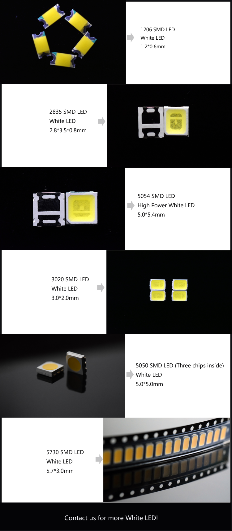 cold white LED catalog