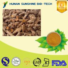 Gesundheitswesen-Rohstoffe organisches natürliches Kurkuma-Wurzel-Extrakt 95% Curcumin